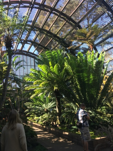 inside the botanical garden (pronounced BOH-tanical garden, don't @ me)